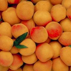 http://www.vitamines-mineraux.com/pic/abricots.jpg